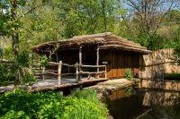 Opravy po povodních, pavilony tapíra, guarez, sitatung a chápanů – ZOO Praha
