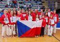 Skvělé úspěchy SK karate Shotokan Neratovice za rok 2013!